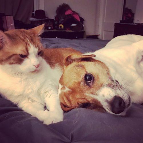 Wilbur & Rusty